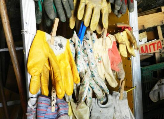 gants